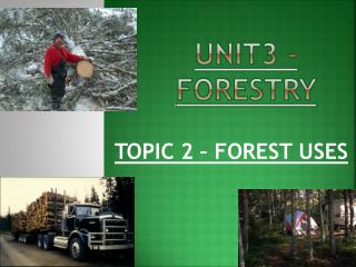 UNIT3 - FORESTRY
