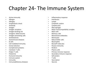 Chapter 24- The Immune System