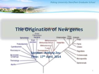 The Origination of New genes