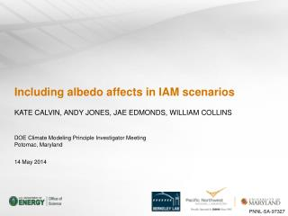 Including albedo affects in IAM scenarios