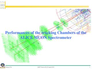 Performances of  the  tracking  Chambers  of the ALICE  muon  Spectrometer