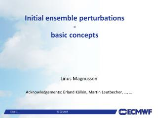 Initial ensemble perturbations - basic concepts