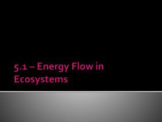 5.1 – Energy Flow in Ecosystems