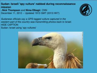 Sudan: Israeli ' spy vulture '  nabbed during reconnaissance mission