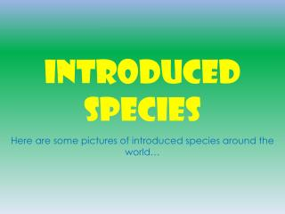 INTRODUCED SPECIES