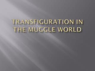 Transfiguration in the  Muggle  World
