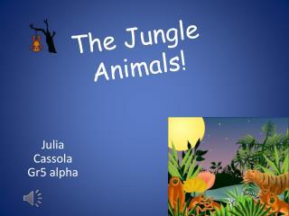 The Jungle Animals!