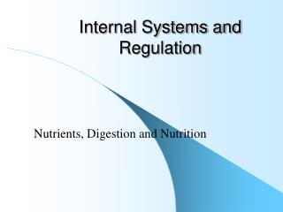 Internal Systems and Regulation