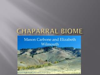 Chaparral Biome