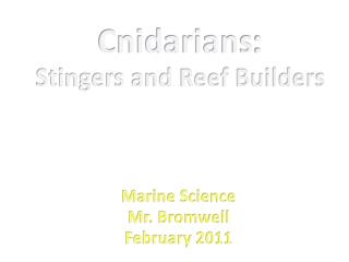 Cnidarians : Stingers and Reef Builders