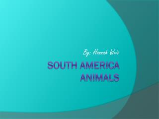 South America Animals