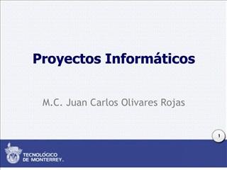 Proyectos Inform ticos
