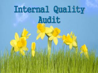 Internal Quality Audit