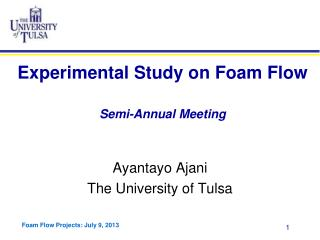 Experimental Study on Foam Flow Semi-Annual Meeting