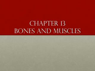 Chapter 13 Bones and muscles