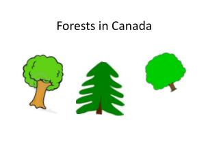 Forests in Canada