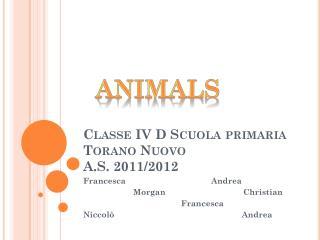 Classe IV D Scuola primaria Torano Nuovo A.S. 2011/2012