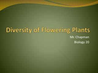Diversity of Flowering Plants