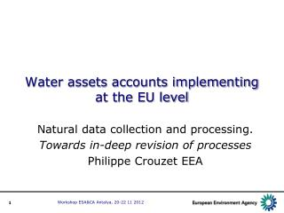 Water assets accounts implementing at the EU level
