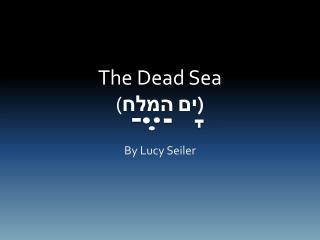 The Dead Sea ( ים המלח )