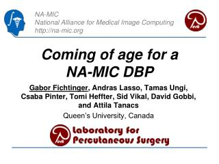 C oming of age for a NA-MIC  DBP