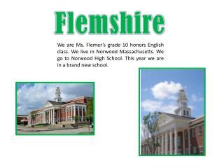 Flemshire
