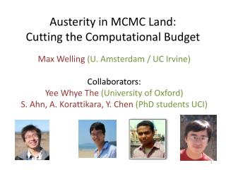 Austerity in MCMC Land: Cutting the Computational Budget