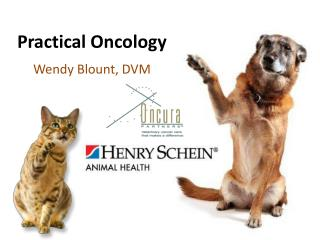 Practical Oncology