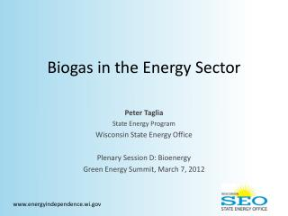 Biogas in the Energy Sector