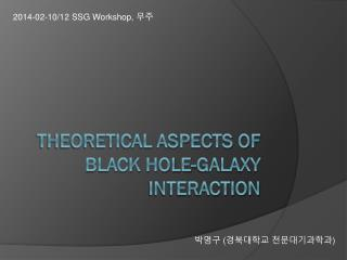 Theoretical Aspects of Black hole-Galaxy Interaction