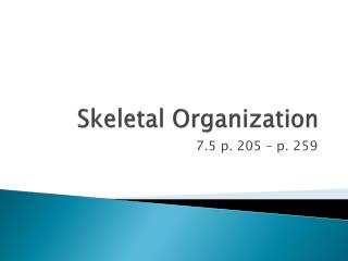 Skeletal Organization