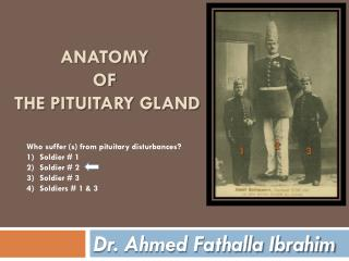 ANATOMY  OF  THE PITUITARY GLAND