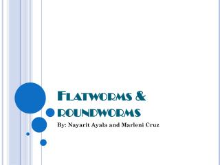 Flatworms & roundworms
