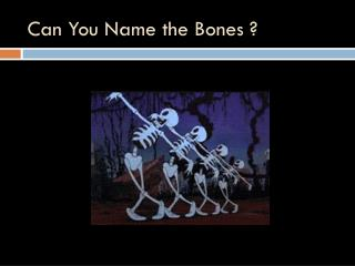 Can You Name the Bones ?