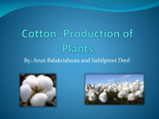 Cotton- Production of Plants