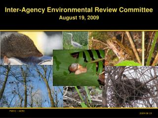 Inter-Agency Environmental Review Committee