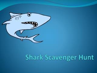 Shark Scavenger Hunt