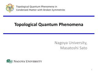 Topological Quantum Phenomena