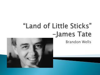 """Land of Little Sticks"" -James Tate"