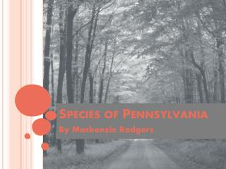 Species of Pennsylvania