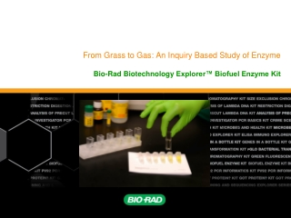 Biotechnology for the  Oil  Gas Industry