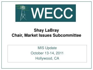 Shay LaBray Chair, Market Issues Subcommittee