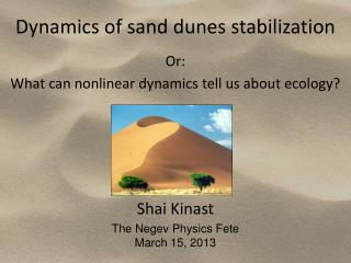 Dynamics of sand dunes  stabilization