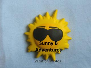 Sunny B Adventures