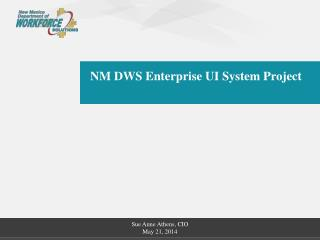 NM DWS Enterprise UI System Project