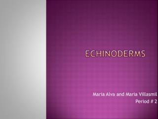 Echinoderms