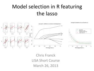 Model selection in R featuring the lasso