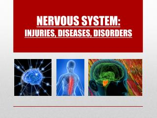 Nervous System: Injuries , Diseases, Disorders