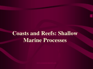 Coasts and Reefs:  Shallow marine processes