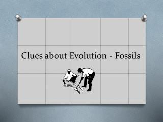 Clues about Evolution - Fossils